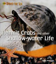 Cover of: Hermit crabs and other shallow-water life   Morgan, Sally.