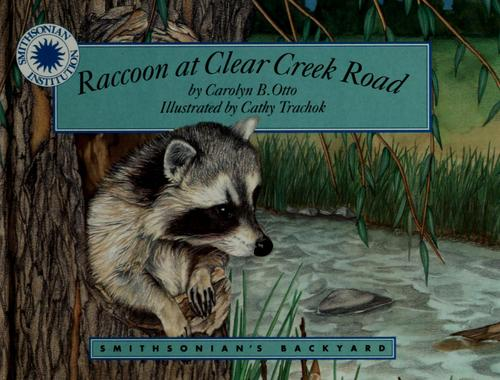 Raccoon at Clear Creek Road by Carolyn Otto